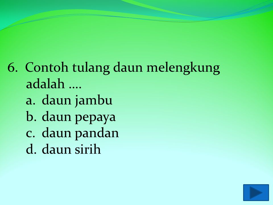 5. Contoh tulang daun sejajar adalah …. a.daun jambu b.daun pepaya c.daun pandan d.daun sirih