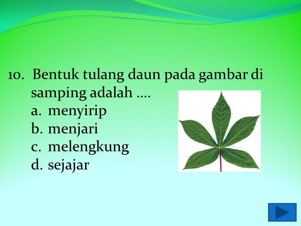 9. Berikut ini yang bukan merupakan kegunaan daun bagi manusia adalah …. a.alat pernapasan b.obat-obatan c.bahan makanan d.rempah-rempah