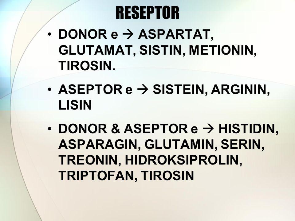 RESEPTOR DONOR e  ASPARTAT, GLUTAMAT, SISTIN, METIONIN, TIROSIN.