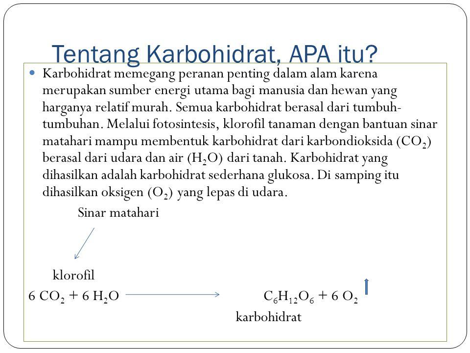Tentang Karbohidrat, APA itu.