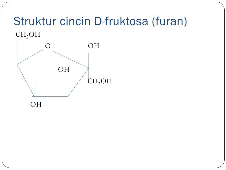 Struktur cincin D-fruktosa (furan) CH 2 OH O OH OH CH 2 OH OH