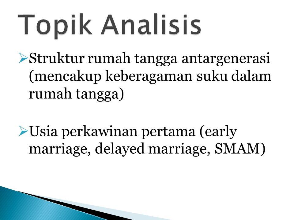  Struktur rumah tangga antargenerasi (mencakup keberagaman suku dalam rumah tangga)  Usia perkawinan pertama (early marriage, delayed marriage, SMAM