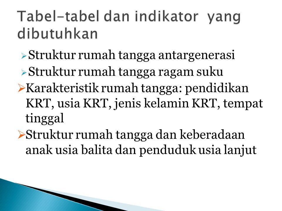  Struktur rumah tangga antargenerasi  Struktur rumah tangga ragam suku  Karakteristik rumah tangga: pendidikan KRT, usia KRT, jenis kelamin KRT, te