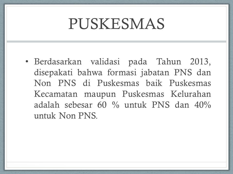 PUSKESMAS Berdasarkan validasi pada Tahun 2013, disepakati bahwa formasi jabatan PNS dan Non PNS di Puskesmas baik Puskesmas Kecamatan maupun Puskesma