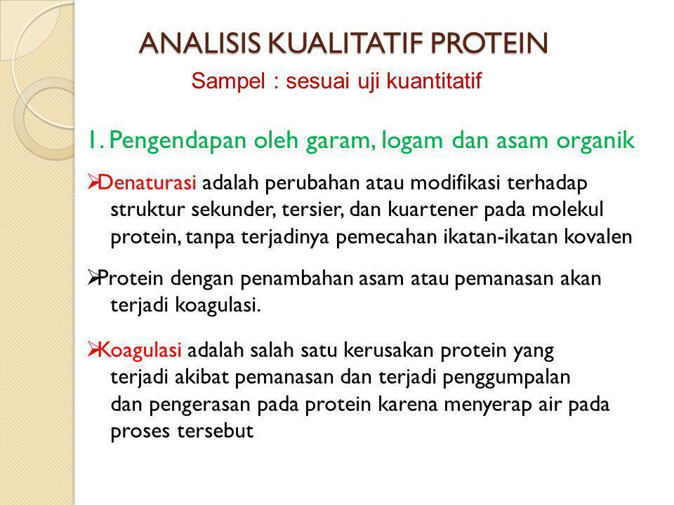 ANALISIS KUALITATIF PROTEIN 1. Pengendapan oleh garam, logam dan asam organik  Denaturasi adalah perubahan atau modifikasi terhadap struktur sekunder