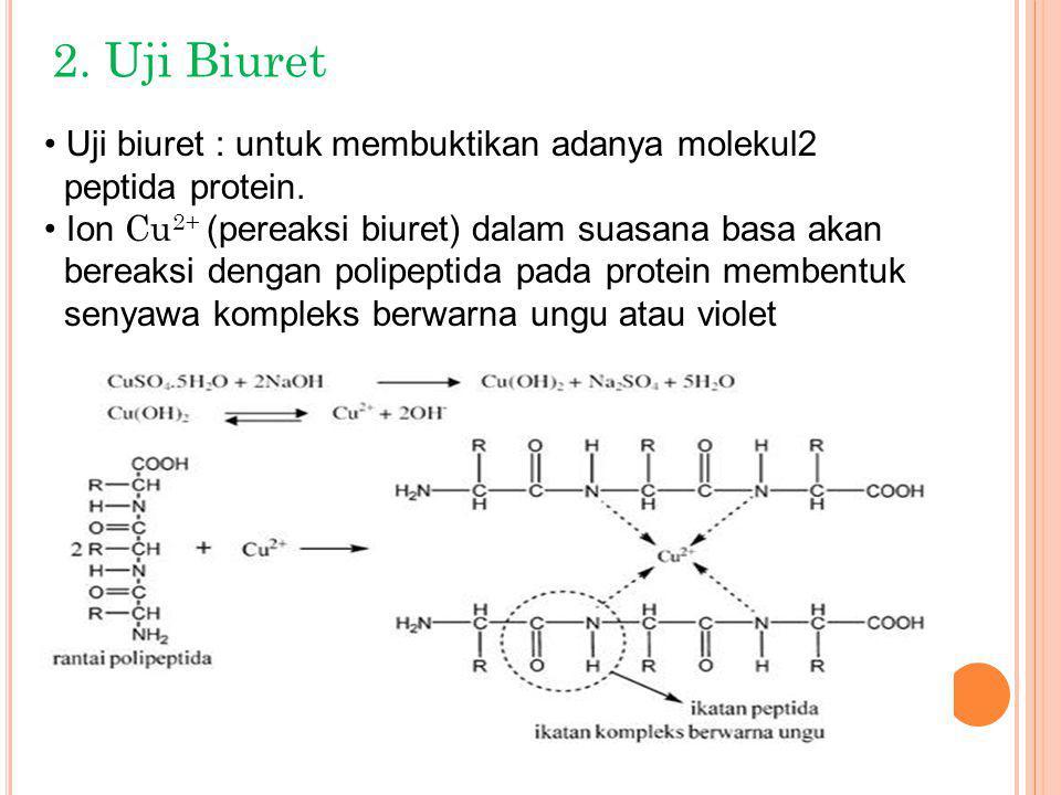 2. Uji Biuret Uji biuret : untuk membuktikan adanya molekul2 peptida protein. Ion Cu 2+ (pereaksi biuret) dalam suasana basa akan bereaksi dengan poli