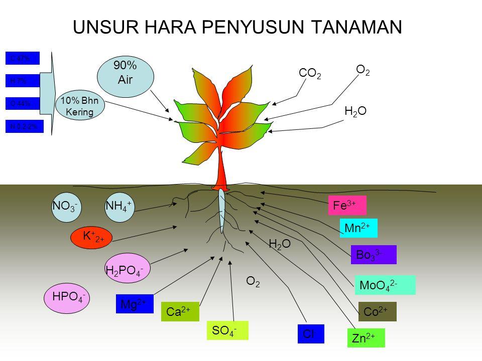 Penggolongan Kelas Tanah Berdasarkan Sifat Fisik & Kimia tanah 1.Tanah yg kimia kaya dan fisik baik. Biasanya pd tanah pegunungan, contohnya; tanah an