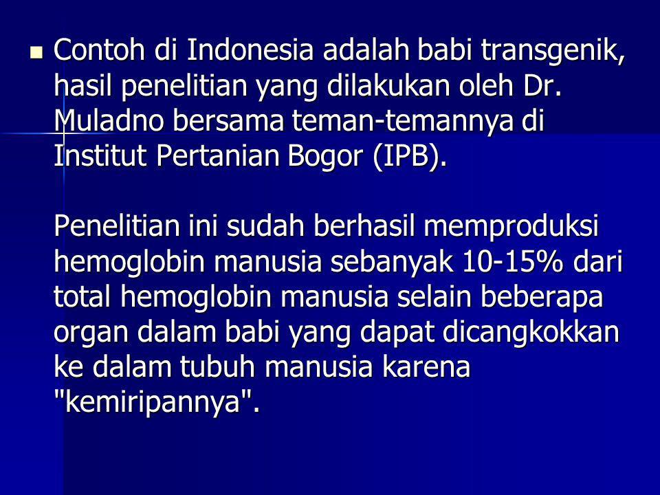 Contoh di Indonesia adalah babi transgenik, hasil penelitian yang dilakukan oleh Dr. Muladno bersama teman-temannya di Institut Pertanian Bogor (IPB).