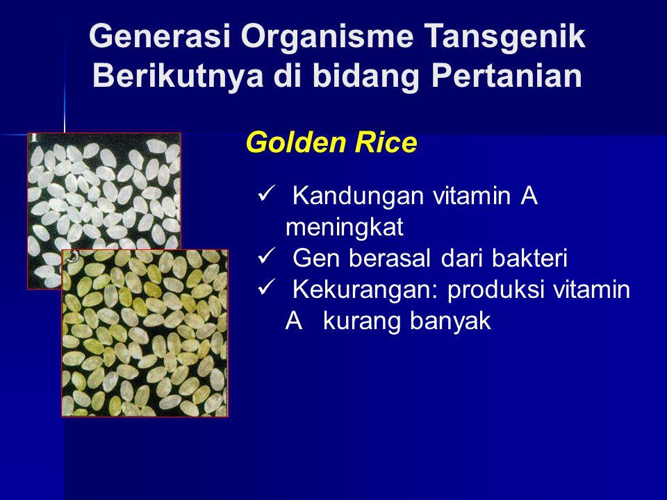 Generasi Organisme Tansgenik Berikutnya di bidang Pertanian Golden Rice Kandungan vitamin A meningkat Gen berasal dari bakteri Kekurangan: produksi vi