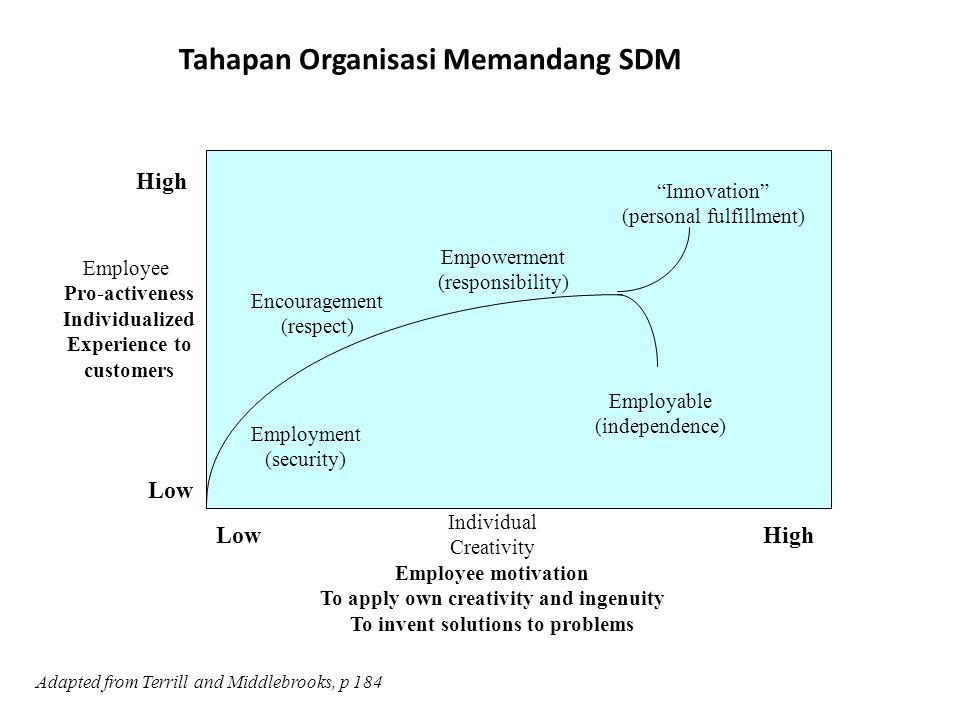 High Low HighLow Employee Pro-activeness Individualized Experience to customers Individual Creativity Employee motivation To apply own creativity and ingenuity To invent solutions to problems Adapted from Terrill and Middlebrooks, p 184 Employment (security) Encouragement (respect) Empowerment (responsibility) Employable (independence) Innovation (personal fulfillment) Tahapan Organisasi Memandang SDM
