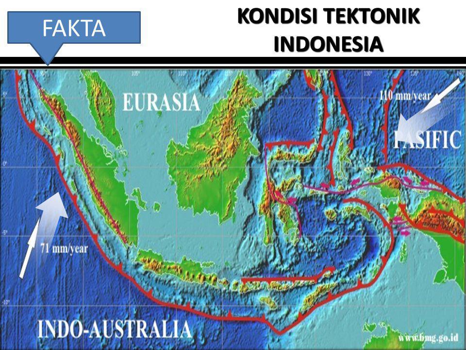 2 KONDISI TEKTONIK INDONESIA FAKTA