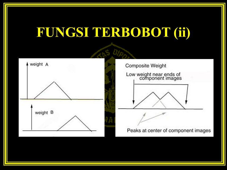 FUNGSI TERBOBOT (ii)