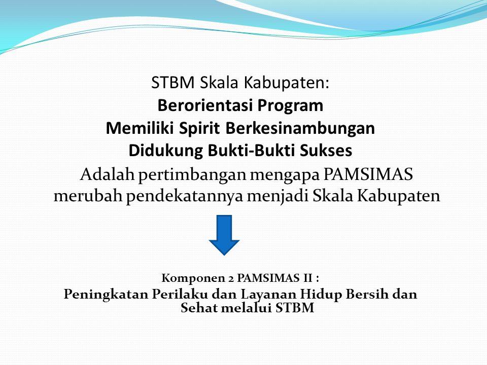 STRATEGI STBM: Pelaksanaan Komponen Kesehatan, dilakukan dengan pendekatan STBM dengan skala/cakupan wilayah kabupaten/kota (district wide) Pendekatan STBM dilaksanakan melalui proses pelembagaan 3 sub- komponen sanitasi total