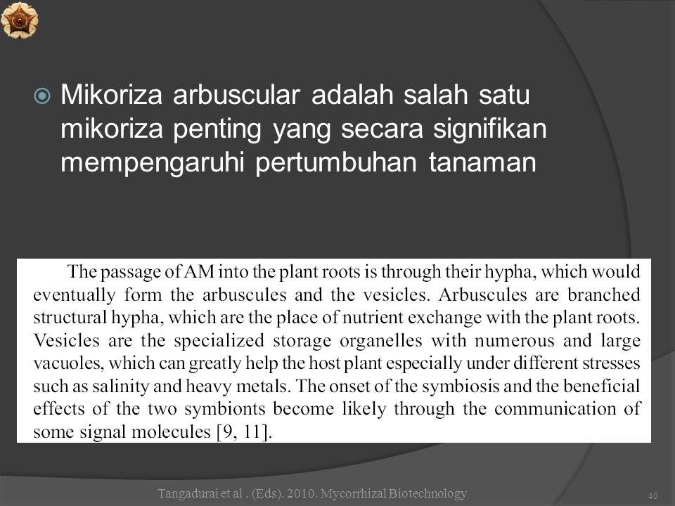  Mikoriza arbuscular adalah salah satu mikoriza penting yang secara signifikan mempengaruhi pertumbuhan tanaman Tangadurai et al. (Eds). 2010. Mycorr