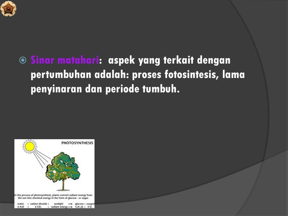  Sinar matahari: aspek yang terkait dengan pertumbuhan adalah: proses fotosintesis, lama penyinaran dan periode tumbuh.