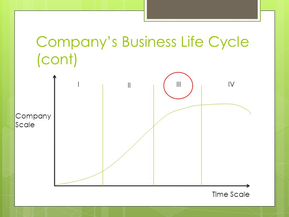 Company's Business Life Cycle (cont) Company Scale Time Scale IVI II III