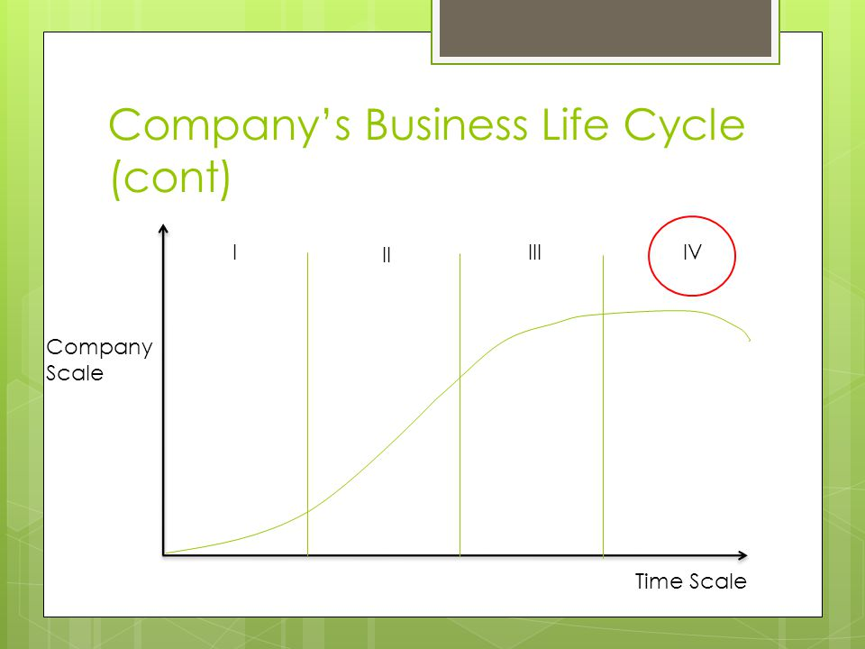Company's Business Life Cycle (cont) Company Scale Time Scale I II IIIIV