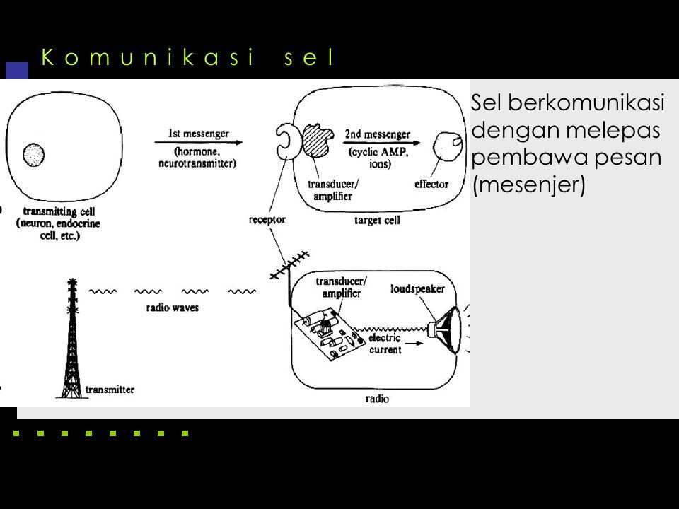 Komunikasi sel Sel berkomunikasi dengan melepas pembawa pesan (mesenjer)