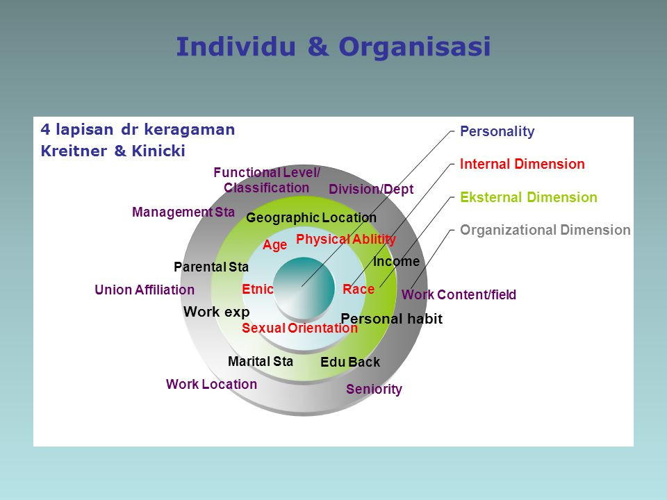 Individu & Organisasi 4 lapisan dr keragaman Kreitner & Kinicki Functional Level/ Classification Geographic Location Age RaceEtnic Sexual Orientation Parental Sta Marital Sta Income Personal habit Work exp Edu Back Management Sta Work Content/field Seniority Work Location Union Affiliation Division/Dept Physical Ablitity