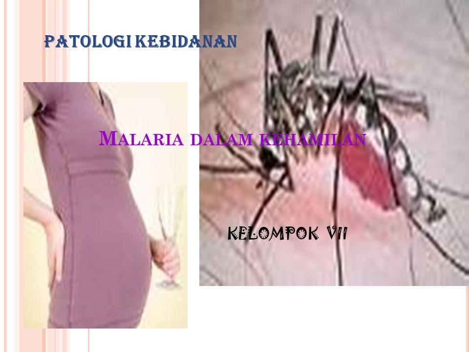 WHO merekomendasikan agar memberikan suatu dosis terapeutik anti malaria untuk semua wanita hamil di daerah endemik malaria pada kunjungan ANC yang pertama, kemudian diikuti kemoprofilaksis teratur.