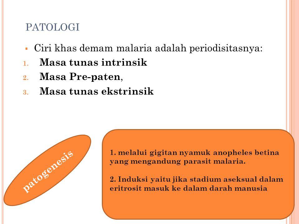 PATOLOGI  Ciri khas demam malaria adalah periodisitasnya: 1. Masa tunas intrinsik 2. Masa Pre-paten, 3. Masa tunas ekstrinsik patogenesis 1. melalui