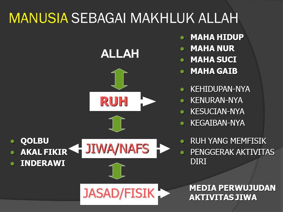 MANUSIA SEBAGAI MAKHLUK ALLAH ALLAH RUH JIWA/NAFS JASAD/FISIK MAHA HIDUP MAHA HIDUP MAHA NUR MAHA NUR MAHA SUCI MAHA SUCI MAHA GAIB MAHA GAIB KEHIDUPA
