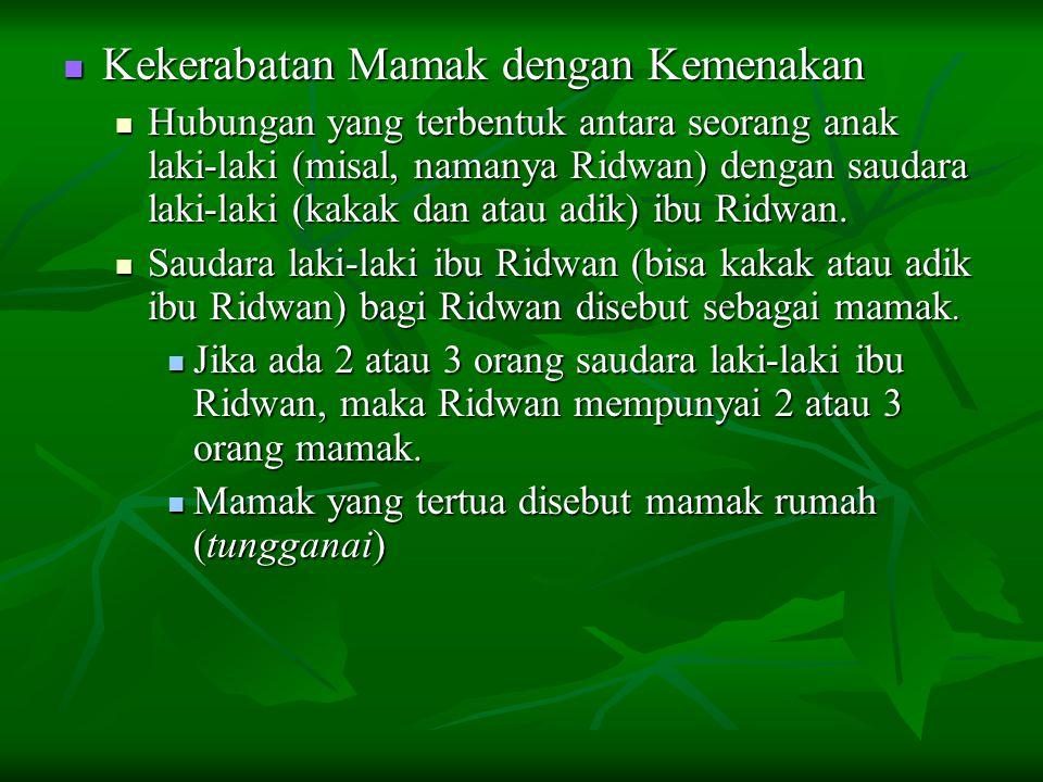 Ridwan bagi saudara laki-laki ibu Ridwan disebut sebagai kemenakan.