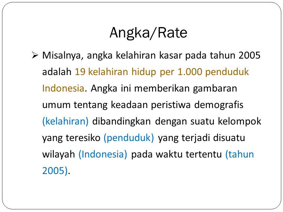 Angka/Rate  Misalnya, angka kelahiran kasar pada tahun 2005 adalah 19 kelahiran hidup per 1.000 penduduk Indonesia. Angka ini memberikan gambaran umu