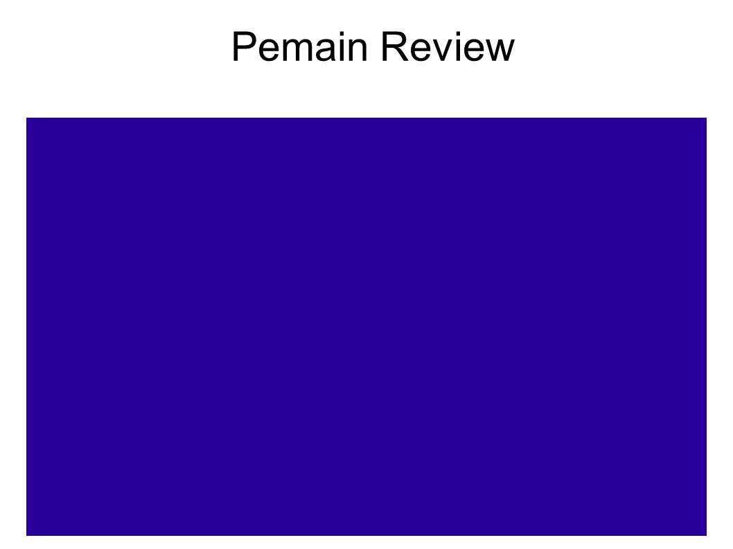24 Pemain Review