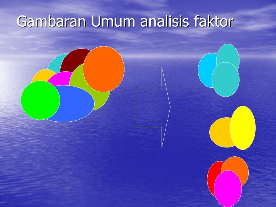Gambaran Umum analisis faktor