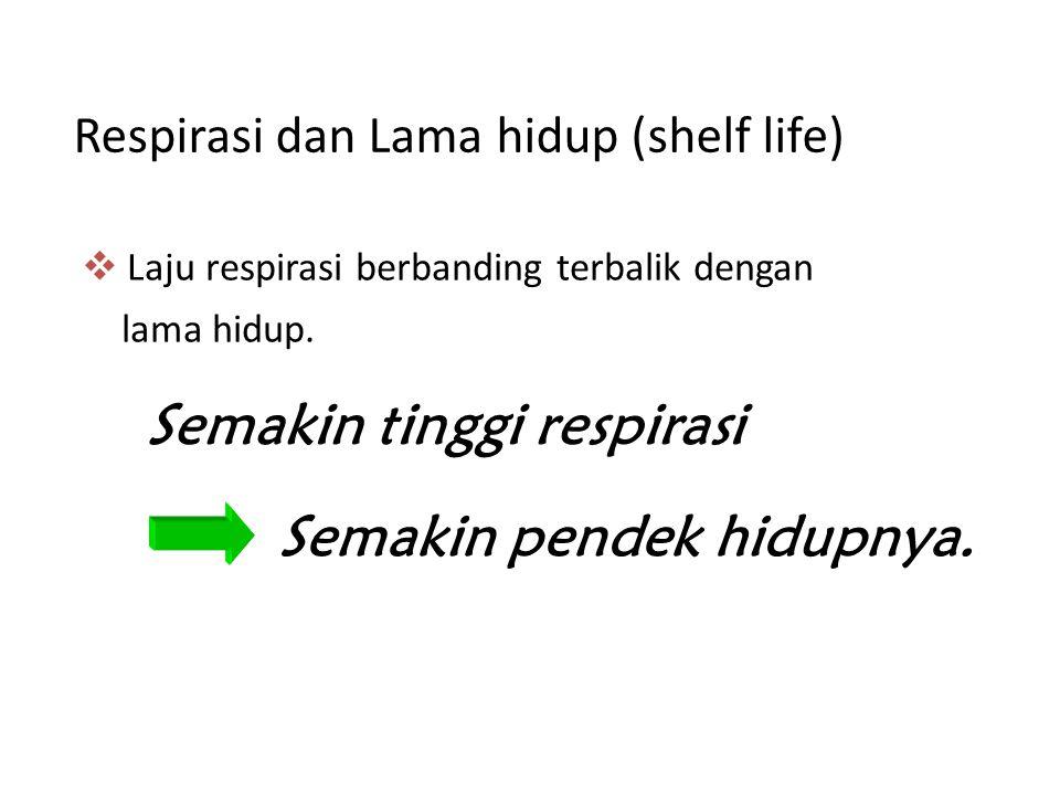 Respirasi dan Lama hidup (shelf life)  Laju respirasi berbanding terbalik dengan lama hidup. Semakin tinggi respirasi Semakin pendek hidupnya.