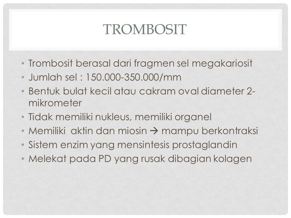 TROMBOSIT Trombosit berasal dari fragmen sel megakariosit Jumlah sel : 150.000-350.000/mm Bentuk bulat kecil atau cakram oval diameter 2- mikrometer Tidak memiliki nukleus, memiliki organel Memiliki aktin dan miosin  mampu berkontraksi Sistem enzim yang mensintesis prostaglandin Melekat pada PD yang rusak dibagian kolagen