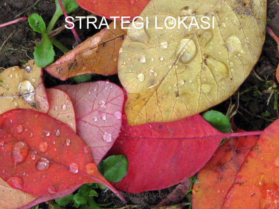 Strategi Lokasi : Jasa Vs Manufaktur Jasa/Eceran/ProfesionalManufaktur Fokus PendapatanFokus Biaya Volume /Pendapatan : area lokasi, daya beli, persaingan, periklanan/ penentuan harga Mutu fisik : parkir/akses, keamanan/ pencahayaan, penampilan/citra Penentua biaya : kaliber manajemen, kebijakan operasi Teknik Analisis : Model regresi, Metode Pemeringkatan Faktor, Analisis Demografi, Analisis Daya Beli, MPG Asumsi : lokasi mrpkan penentu pendapatan, isu kontak konsumen yg tinggi sangat penting, biaya relatif konstan, fungsi pendapatan penting Biaya Terlihat: Biaya transportasi bahan baku, Biaya pengakutan barang jadi, Biaya energi dan utilitas, tenaga kerja, bahan baku, pajak Biaya Tdk Terlihat dan Biaya Masa Depan: Sikap thd serikat pekerja, Mutu hidup, Pengeluaran pendidikan oleh pemerintah, Mutu pemerintah pusat dan daerah Teknik Analisis : Metode transportasi, Metode pemeringkatan faktor, Analisis titik- impas lokasi, Grafik silang Asumsi : Loaksi mrpkan penentu biaya, Kebanyakan biaya dapat diidentifikasi utk setiap lokasi, Kontak konsumen yg rendah memungkinkan fokus pada biaya Biaya tidak terlihat dapat dievaluasi