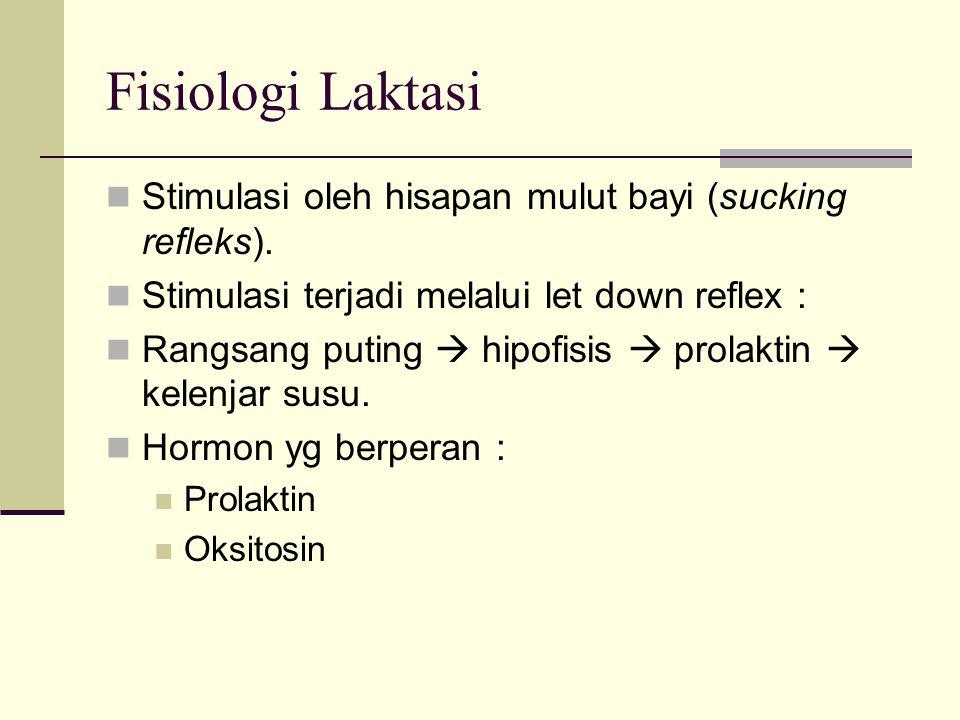 Fisiologi Laktasi Stimulasi oleh hisapan mulut bayi (sucking refleks). Stimulasi terjadi melalui let down reflex : Rangsang puting  hipofisis  prola