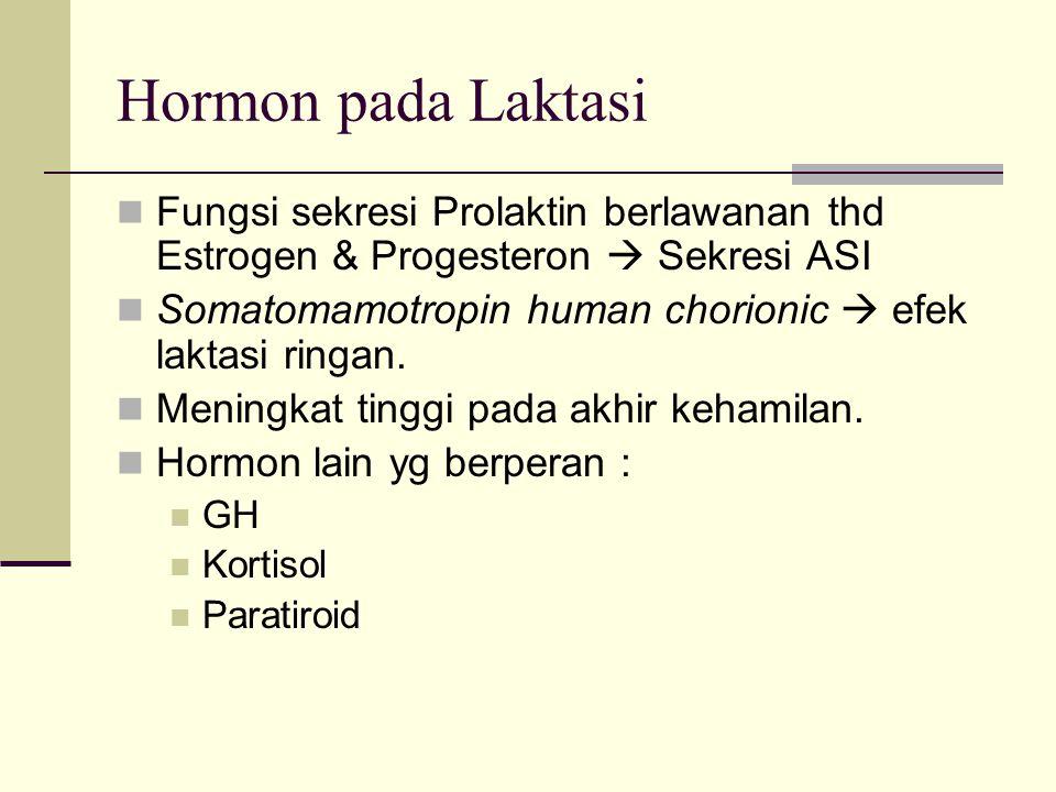 Hormon pada Laktasi Fungsi sekresi Prolaktin berlawanan thd Estrogen & Progesteron  Sekresi ASI Somatomamotropin human chorionic  efek laktasi ringa