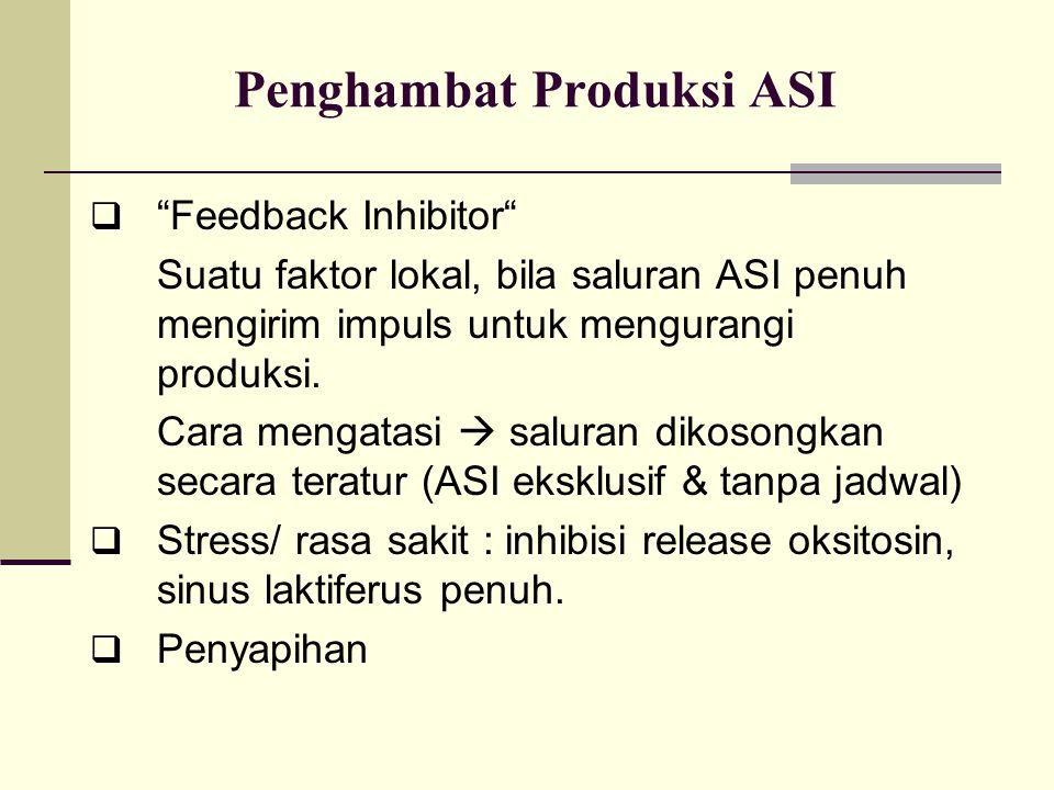 """Penghambat Produksi ASI  """"Feedback Inhibitor"""" Suatu faktor lokal, bila saluran ASI penuh mengirim impuls untuk mengurangi produksi. Cara mengatasi """