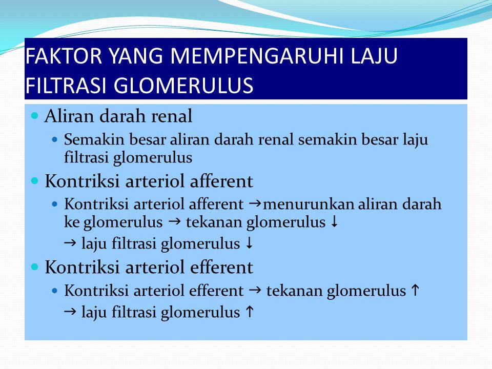 FAKTOR YANG MEMPENGARUHI LAJU FILTRASI GLOMERULUS Aliran darah renal Semakin besar aliran darah renal semakin besar laju filtrasi glomerulus Kontriksi