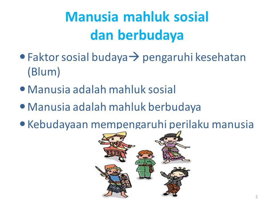 Faktor sosial kesehatan Pulung siswantara