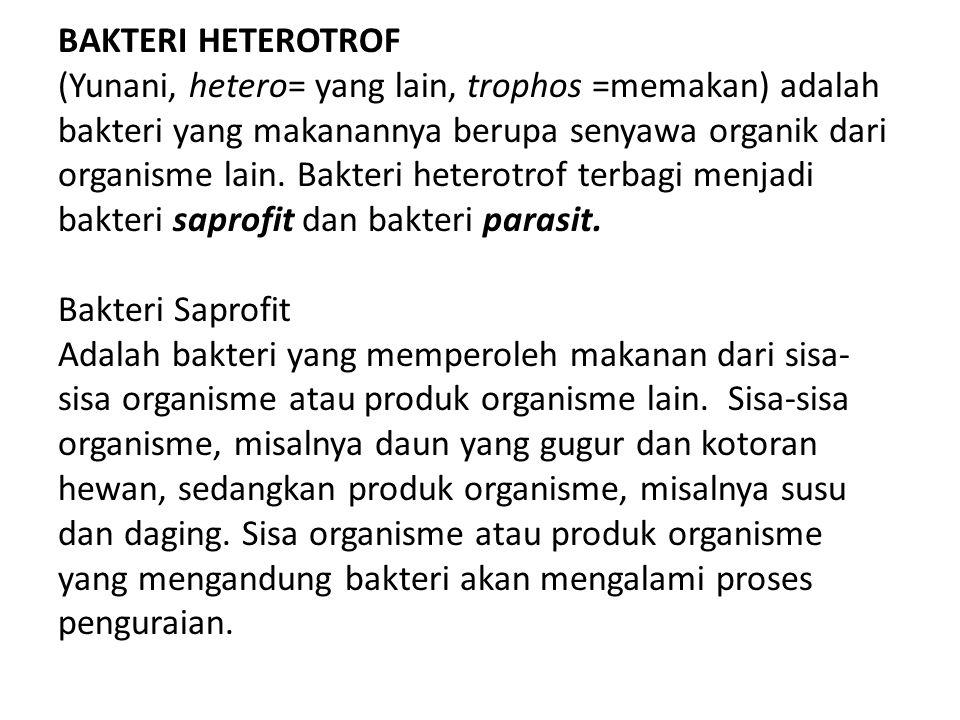 BAKTERI HETEROTROF (Yunani, hetero= yang lain, trophos =memakan) adalah bakteri yang makanannya berupa senyawa organik dari organisme lain. Bakteri he