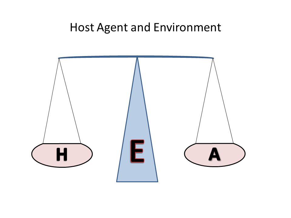 Host Agent and Environment