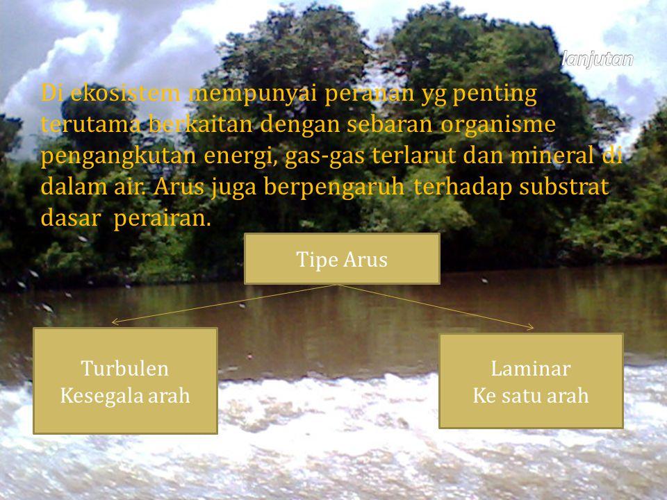 Di ekosistem mempunyai peranan yg penting terutama berkaitan dengan sebaran organisme pengangkutan energi, gas-gas terlarut dan mineral di dalam air.