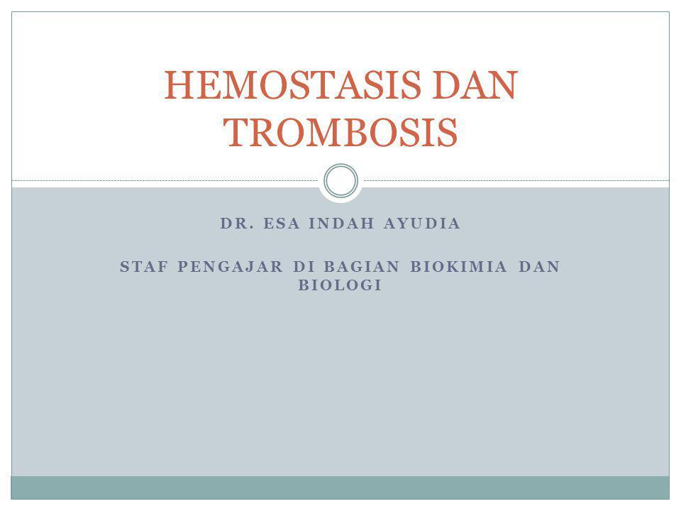 DR. ESA INDAH AYUDIA STAF PENGAJAR DI BAGIAN BIOKIMIA DAN BIOLOGI HEMOSTASIS DAN TROMBOSIS