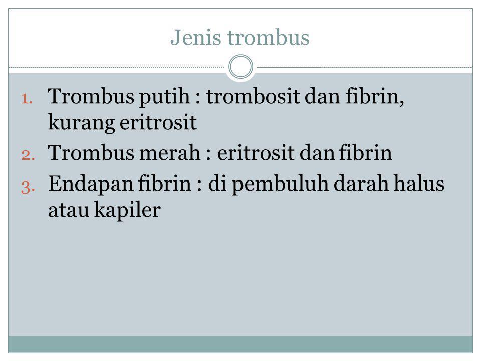 Jenis trombus 1. Trombus putih : trombosit dan fibrin, kurang eritrosit 2. Trombus merah : eritrosit dan fibrin 3. Endapan fibrin : di pembuluh darah