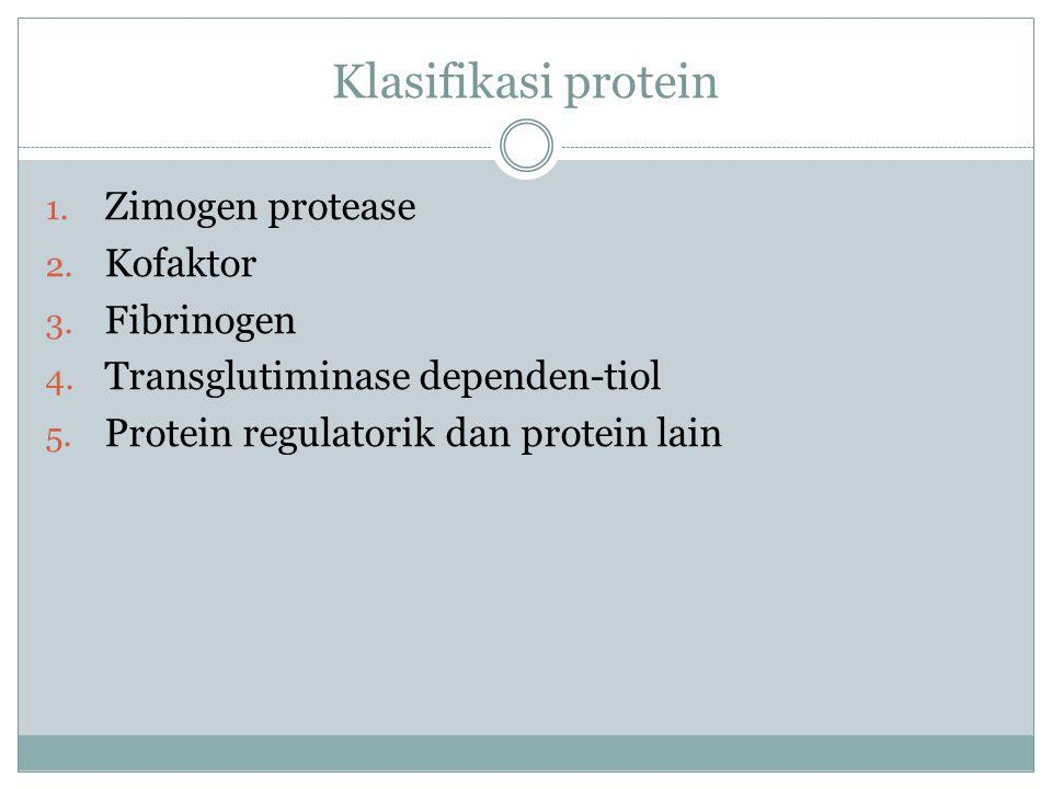 Klasifikasi protein 1. Zimogen protease 2. Kofaktor 3. Fibrinogen 4. Transglutiminase dependen-tiol 5. Protein regulatorik dan protein lain