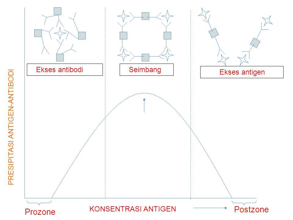 PRESIPITASI ANTIGEN-ANTIBODI Prozone KONSENTRASI ANTIGEN Postzone Ekses antibodi Seimbang Ekses antigen
