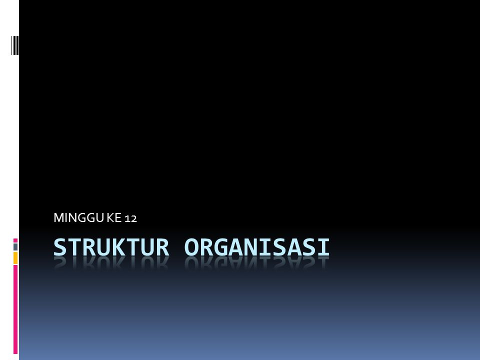 STRUKTUR ORGANISASI  Terry (1986) menyatakan:  Pengorganisasian adalah proses mengusahakan hubungan-hubungan yang efektif antara orang-orang, sehingga mereka dapat bekerja sama secara efisien dan dengan demikian memperoleh kepuasan pribadi dalam melaksanakan tugas tertentu, dalam kondisi lingkungan tertentu guna mencapai tujuan tertentu.