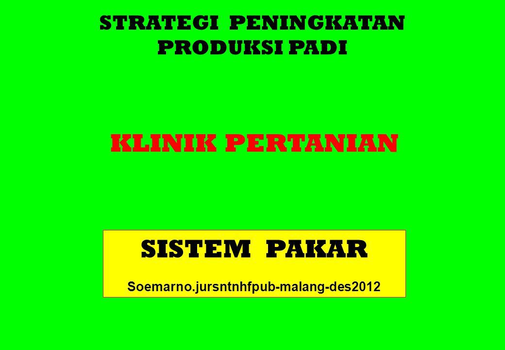 STRATEGI PENINGKATAN PRODUKSI PADI KLINIK PERTANIAN SISTEM PAKAR Soemarno.jursntnhfpub-malang-des2012