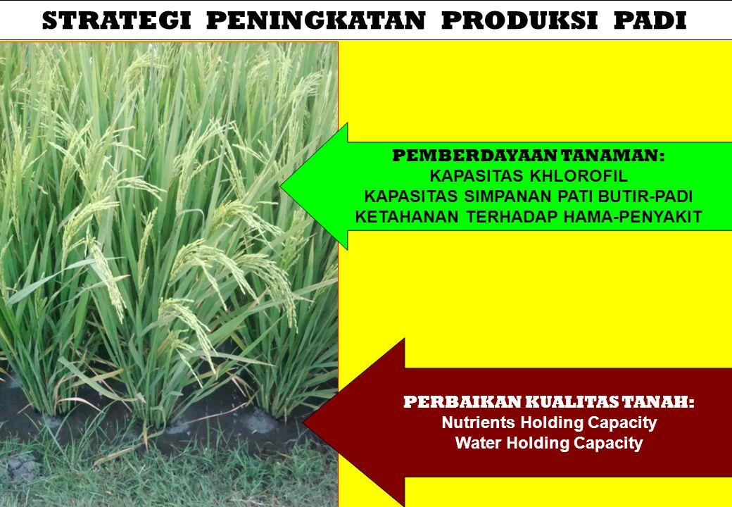 SAWAH Sawah adalah lahan usaha pertanian yang secara fisik permukaan BIDANG OLAHNYA rata, dibatasi oleh pematang, serta dapat ditanami padi, palawija atau tanaman budidaya lainnya.