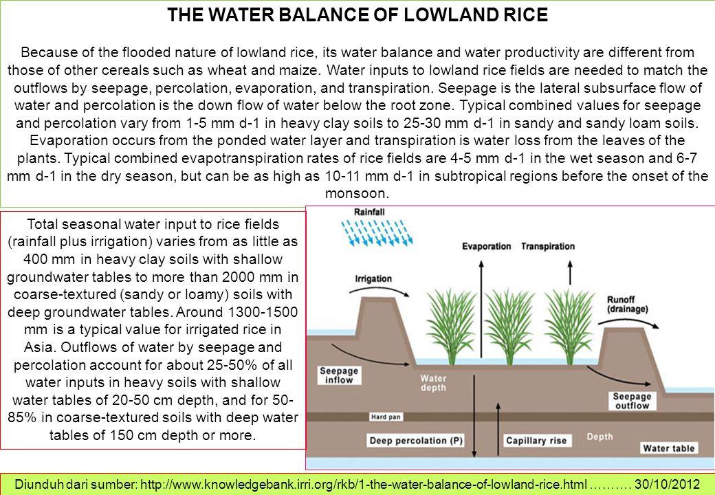 Diunduh dari sumber: http://www.knowledgebank.irri.org/rkb/1-the-water-balance-of-lowland-rice.html ………. 30/10/2012 THE WATER BALANCE OF LOWLAND RICE