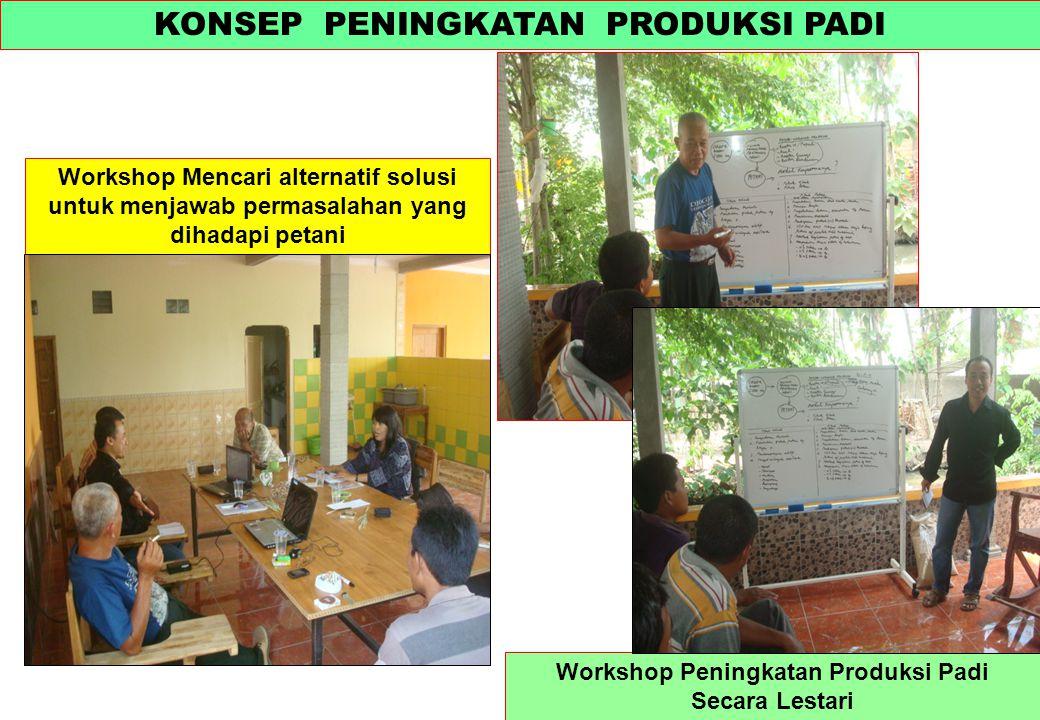KONSEP PENINGKATAN PRODUKSI PADI Workshop Peningkatan Produksi Padi Secara Lestari Workshop Mencari alternatif solusi untuk menjawab permasalahan yang